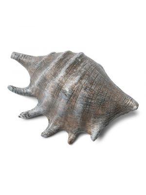 Harmaa simpukka, 1 kpl, 12 x 8 cm.