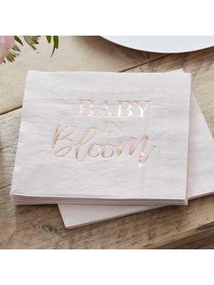 Pahvilautaset, Baby in Bloom, 24,5 cm, 8kpl