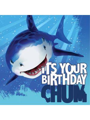 """Servetit valkoihain kuvalla ja tekstillä """"Its Your Birthday Chum!"""
