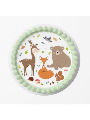Kakkukuva - Metsän Eläimet