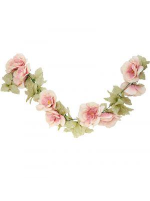 Hennon vaaleanpunainen ruusuköynnös, 220 cm