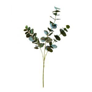Keinotekoinen eukalyptusoksa.